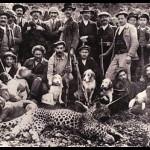 Animaux disparus en Tunisie : Espèces animales qui avaient existé sur le sol sauvage Tunisien