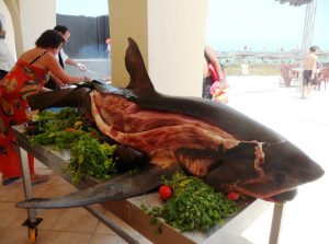 Photo Hotel Iberostar Safira Palms Barbecue Requin