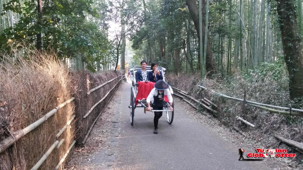 Transport a Kyoto Arashiyama foret Bambou