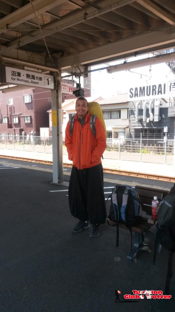 de Shimizu vers Shizuoka