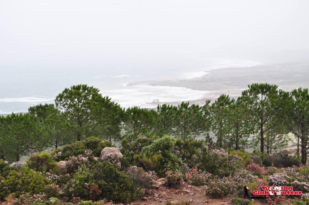 vue de Sidi Mechreg depuis Djebel chitan