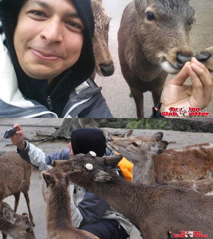 Daims Nara Selfie